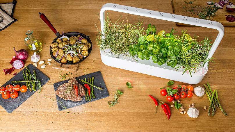 smart vegetable garden
