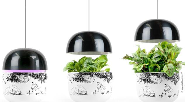 piante in capsula giardino smart